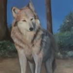 Hond met blauwe achtergrond, Wil